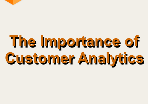 The Importance of Customer Analytics